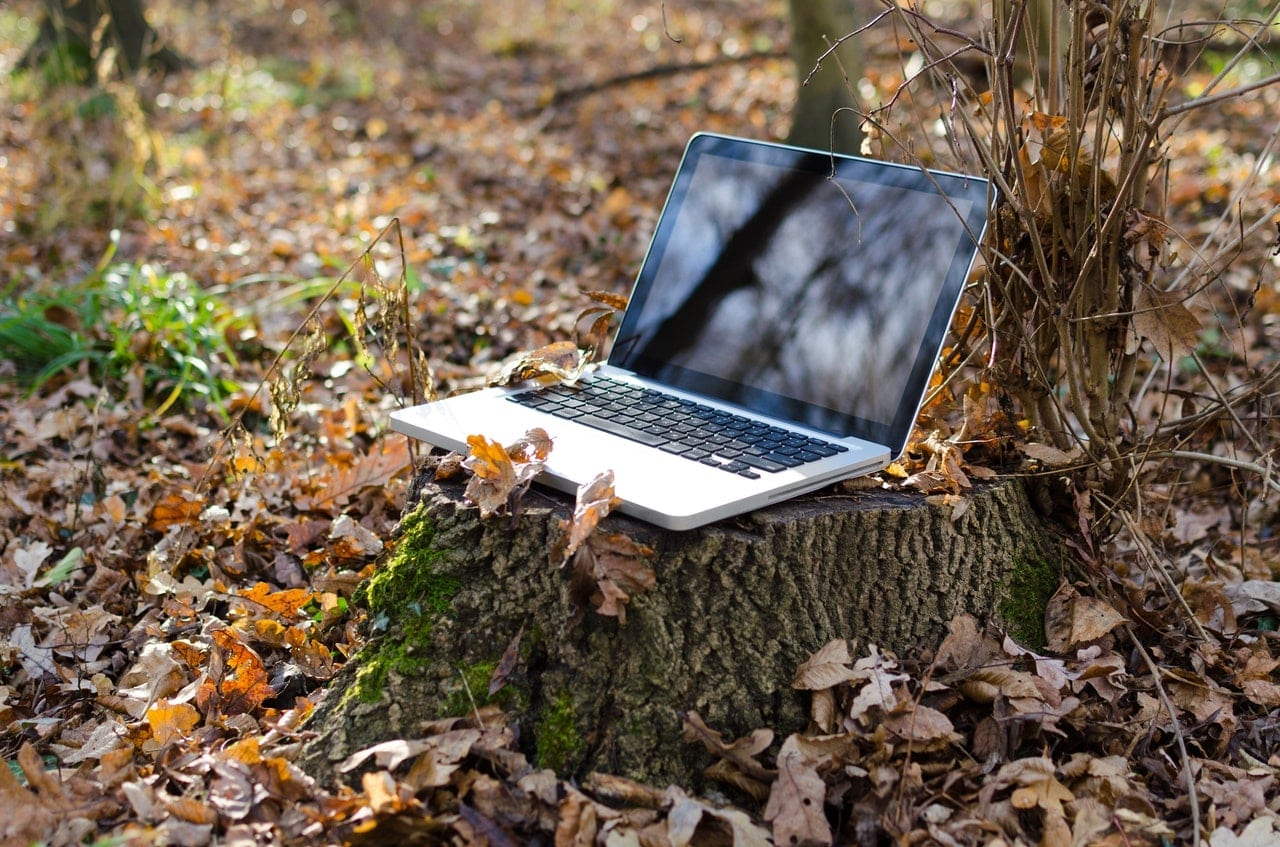 Laptop Nature