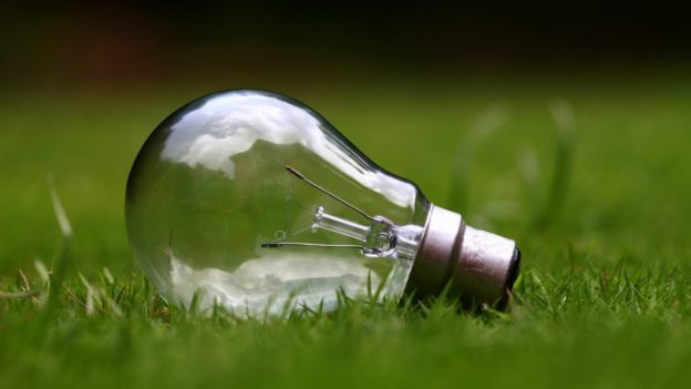 Light Bulb in Gras